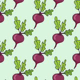 Cartoon hand drawn seamless pattern with beet vegetables. Vector illustration with healthy food. Royalty Free Stock Photo
