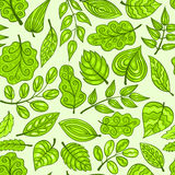 Cartoon hand-drawn seamless pattern with spring leaves Royalty Free Stock Photography