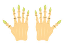 Cartoon hand witch Royalty Free Stock Photo