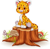 Cartoon happy baby cheetah sitting on tree stump Stock Photography