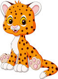 Cartoon happy baby cheetah sitting  on white background Stock Images