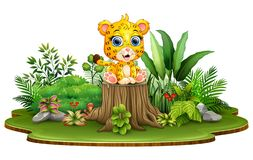 Free Cartoon Happy Baby Leopard Sitting On Tree Stump With Green Plants Stock Photography - 131473782