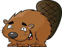 Cartoon Happy Beaver Royalty Free Stock Photo