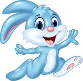 Cartoon happy bunny running  on white background Royalty Free Stock Photography