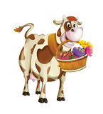 Cartoon happy cow holding in her mouth basket with fruits and flowers - isolated Stock Photography