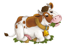 Cartoon happy cow is lying down resting looking and eating grass - artistic style - isolated background. Happy and funny traditional scene for different usage stock illustration