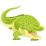 Cartoon happy Crocodile Royalty Free Stock Photos