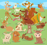 Cartoon happy dogs group Royalty Free Stock Image