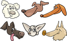 Cartoon happy dogs heads set Stock Image