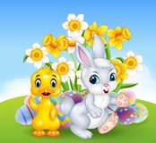 Cartoon happy duck and bunny with colourful Easter eggs Royalty Free Stock Image