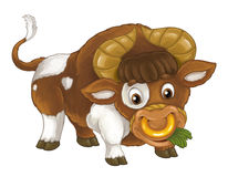 Cartoon happy farm animal - cheerful bull is standing smiling looking and eating - artistic style - isolated. Beautiful and colorful illustration for the stock illustration