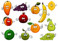 Cartoon happy fresh fruits characters Royalty Free Stock Images