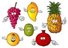Cartoon happy fresh fruits characters Stock Photography