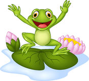 Cartoon happy frog jumping on a water lily Stock Images