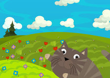 Cartoon happy and funny scene with cat on the colorful meadow. Cartoon scene for different fairy tales - illustration for children Royalty Free Stock Photography