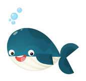 Cartoon happy and funny sea whale with bubbles  Royalty Free Stock Photography