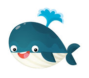 Cartoon happy and funny sea whale with bubbles isolated Stock Image