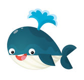 Cartoon happy and funny sea whale with bubbles isolated Stock Images