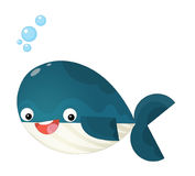 Cartoon happy and funny sea whale with bubbles isolated Royalty Free Stock Photo