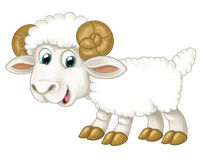 Cartoon happy horned sheep is standing looking and smiling - artistic style -  Royalty Free Stock Photo