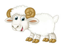 Cartoon happy horned sheep is standing looking and smiling - artistic style - isolated Royalty Free Stock Photos