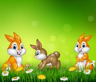 Cartoon happy little bunny on grass background Stock Image