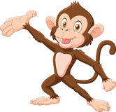 Cartoon Happy monkey presenting isolated on white background Royalty Free Stock Image