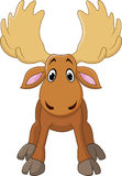 Cartoon happy moose with big horns Royalty Free Stock Image