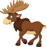 Cartoon happy moose with big horns Royalty Free Stock Images