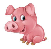 Cartoon happy pig is smiling looking and smiling - artistic style - isolated Royalty Free Stock Photo