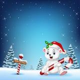 Cartoon happy polar bear holding candy Stock Photography