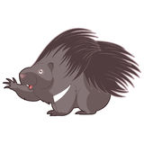 Cartoon happy Porcupine. Vector image of the Cartoon happy Porcupine Stock Images