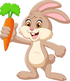 Cartoon happy rabbit holding carrot Stock Photo