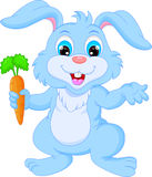 Cartoon happy rabbit holding carrot Stock Photography