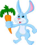Cartoon happy rabbit holding carrot Stock Images