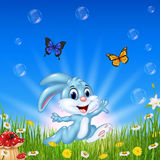 Cartoon happy rabbit running with beautiful nature background Royalty Free Stock Photography