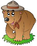 Cartoon happy scout bear vector illustration