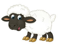 Cartoon happy sheep is standing looking and smiling - artistic style -  Stock Photos