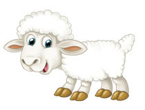 Cartoon happy sheep is standing looking and smiling - artistic style - isolated. Beautiful and colorful illustration for the children - for different usage stock illustration
