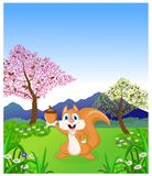 Cartoon happy squirrel posing Royalty Free Stock Image