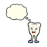 cartoon happy tooth with thought bubble Royalty Free Stock Image