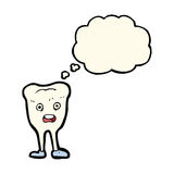 cartoon happy tooth with thought bubble Royalty Free Stock Photography