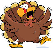 Cartoon Happy Turkey Royalty Free Stock Image