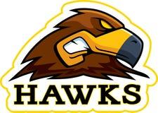 Cartoon Hawk Mascot Royalty Free Stock Photography