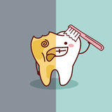 Cartoon healthy and decayed tooth Stock Image
