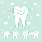 Cartoon healthy tooth Royalty Free Stock Photos