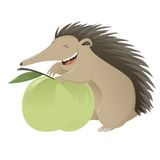 Cartoon hedgegog Royalty Free Stock Photo
