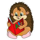 Cartoon hedgehog Stock Photography