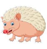 Cartoon hedgehog being looked Stock Photos
