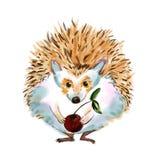 Cartoon hedgehog drawn in cartoon style Royalty Free Stock Photo